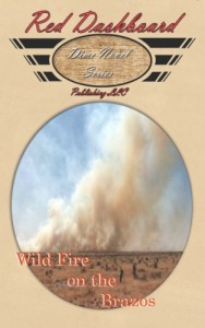 WildFireontheBrazosBookCoverImage